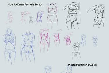 Tutorial Female Torsos by discipleneil777