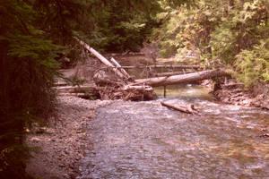 Wreckage in the Rapids by Lumanaru