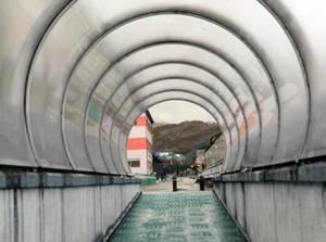 Tunnel stock