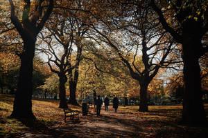 Autumn Walk by WillTC
