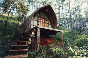 Happy House by WillTC