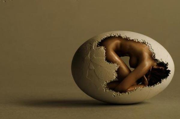 egg by tedix