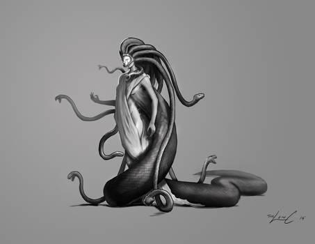 Medusa Redesign