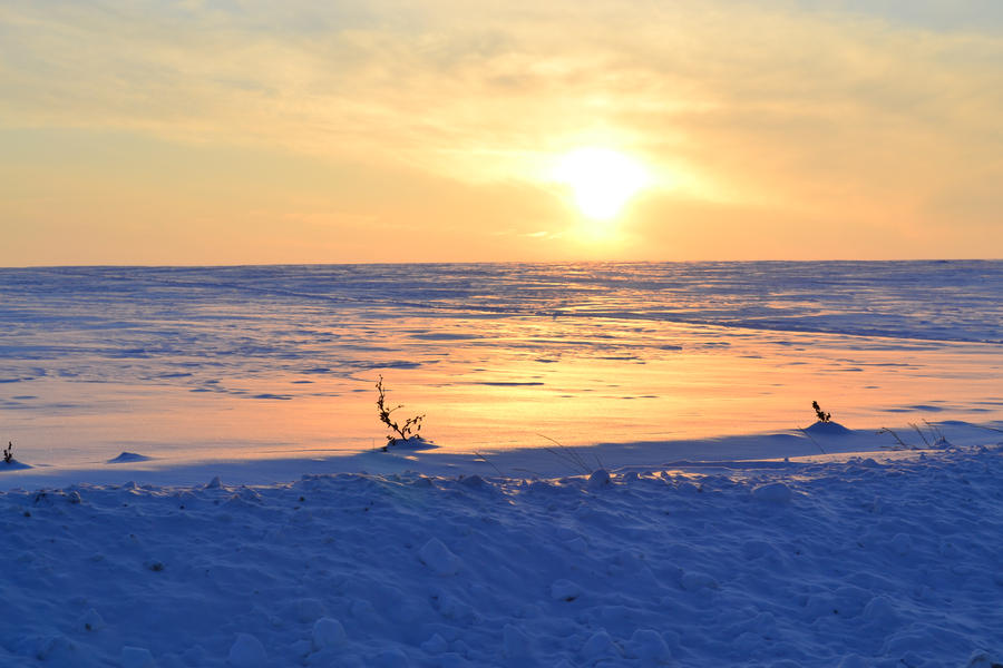 Over the sea of ice