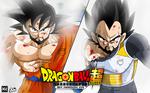 Poster Goku Y Vegeta entrenando hab. del tiempo