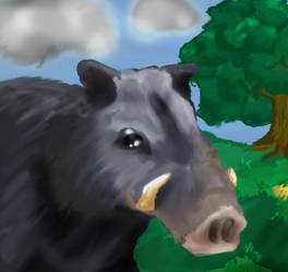 Boar in the field by irongollem