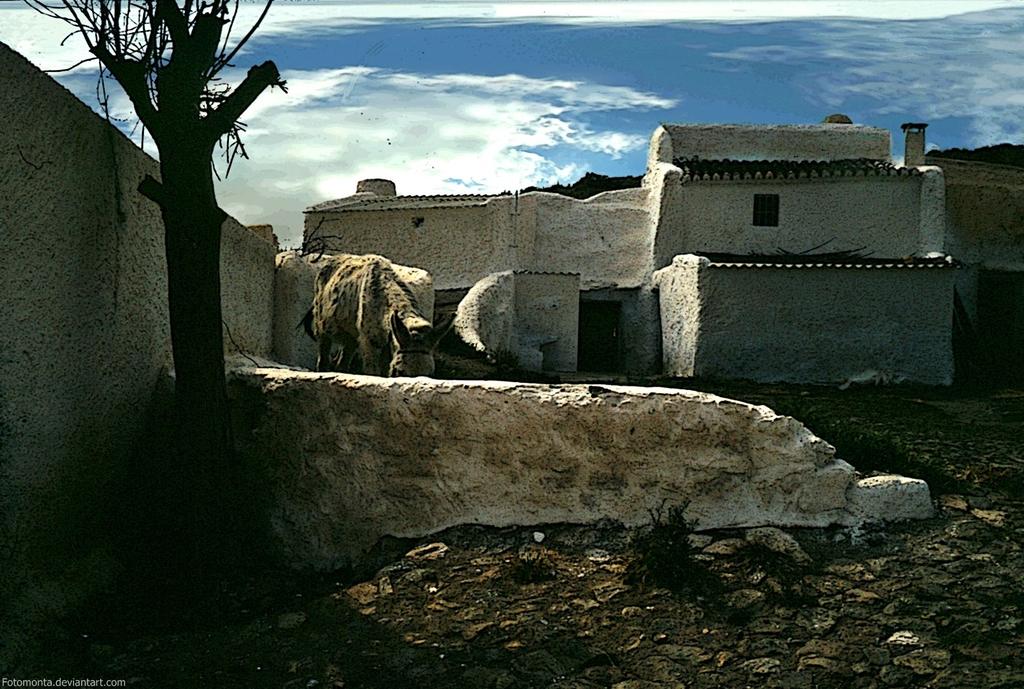 Alcudia de Guadix by Woscha