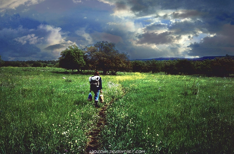 On The Way Through Golan Heights by Woscha