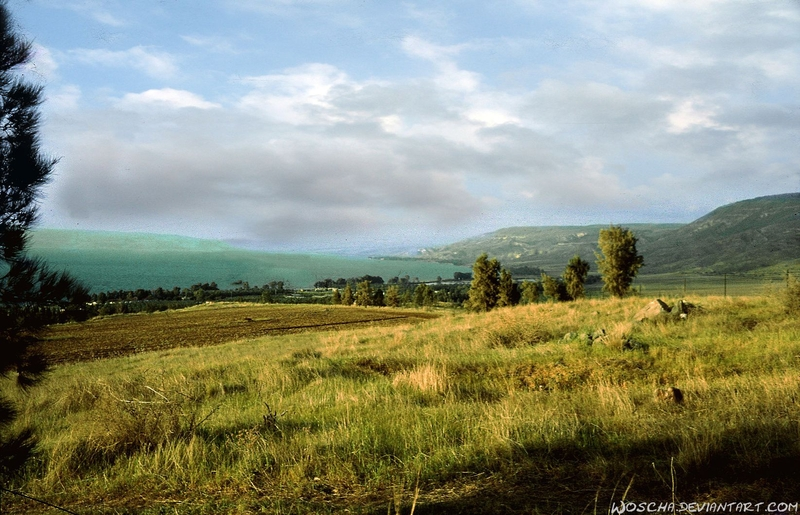 View On Sea Of Galilee by Woscha