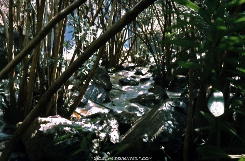 At Waterfall Of River Dabbura by Woscha