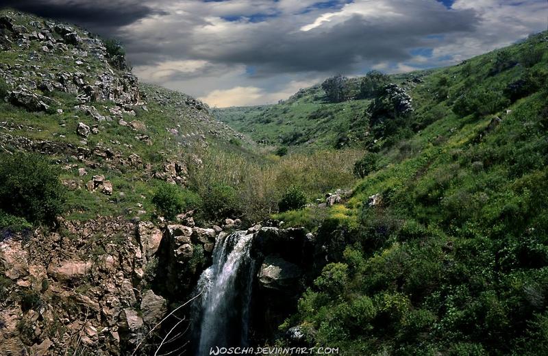 Wadi Dabbura (Golan) by Woscha