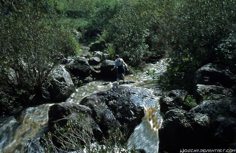 Crossing River Dabbura (Golan) by Woscha
