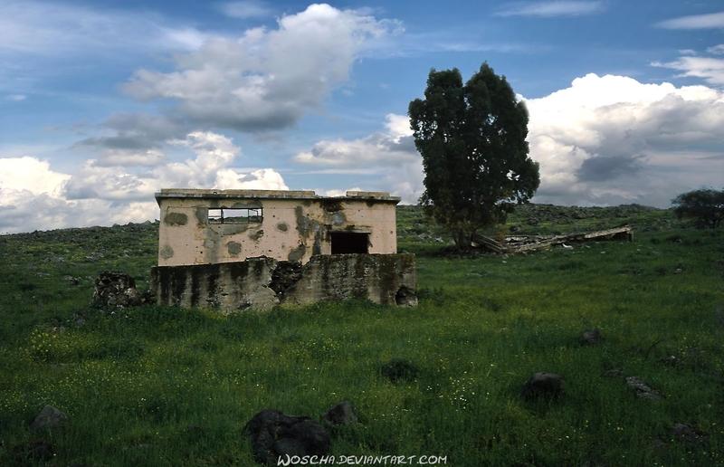 Ruins Near Dabbura (Golan) by Woscha
