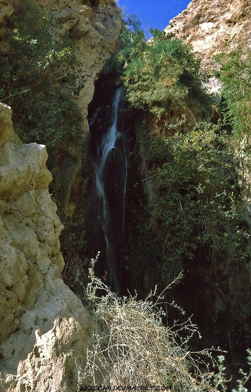 Waterfall At Nahal David by Woscha