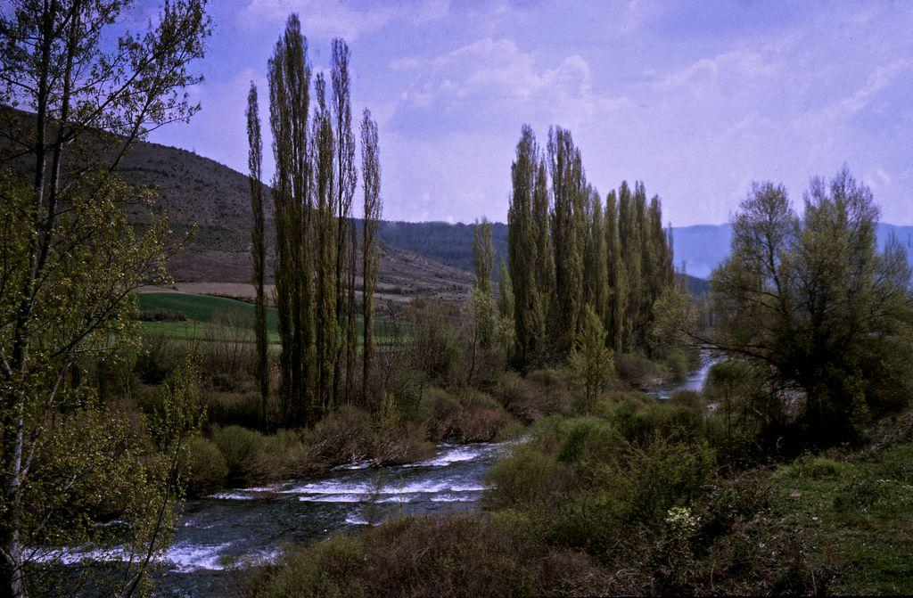 Rio Salazar - Prov. Navarra - Spain by Woscha