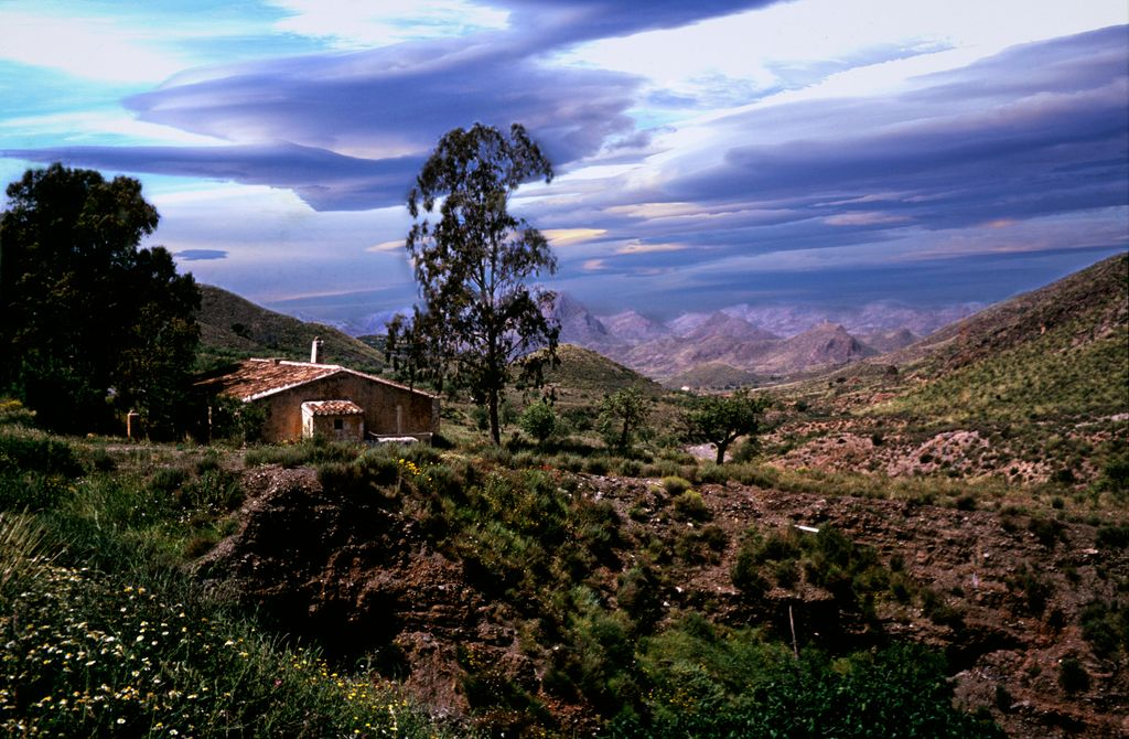 Sierra de Cantal - Prov. Murcia - Spain by Woscha