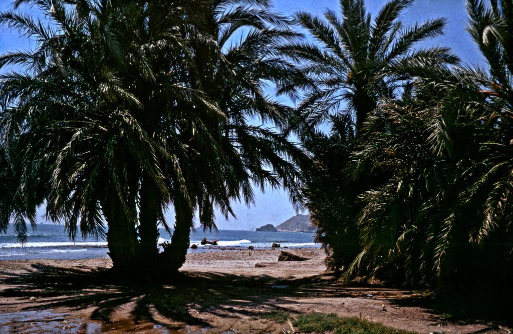 Coast near Aguilas - Prov. Murcia - Spain by Woscha