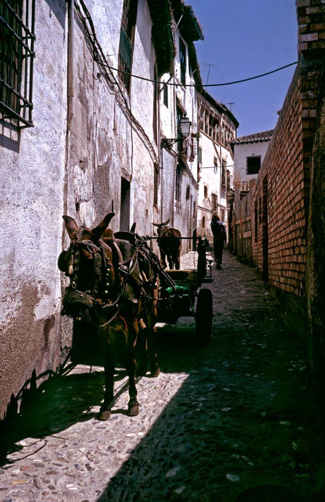 Narrow Aisle in Granada - Spain by Woscha