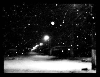 Black and White: Winter by BrailaCity