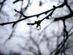 ... autumn... by batalu by BrailaCity