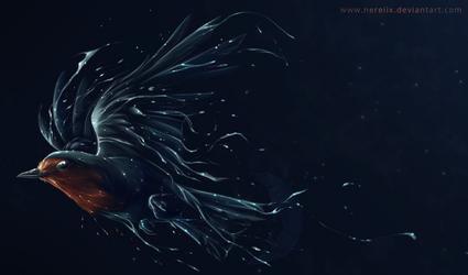 European robin by Nereiix