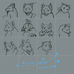 Icons YCH