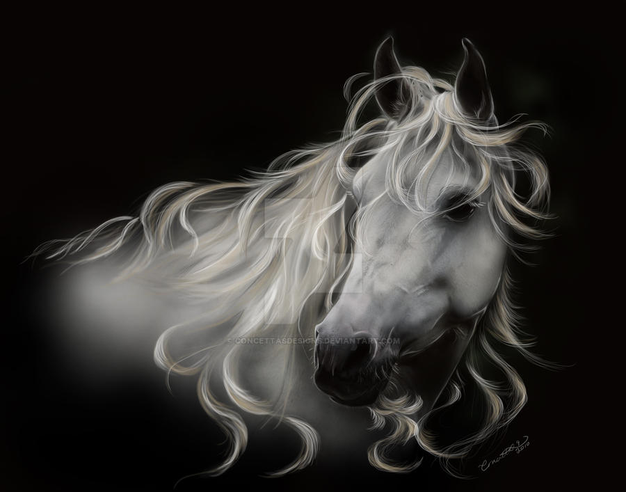 Fantasy White Stallion by concettasdesigns
