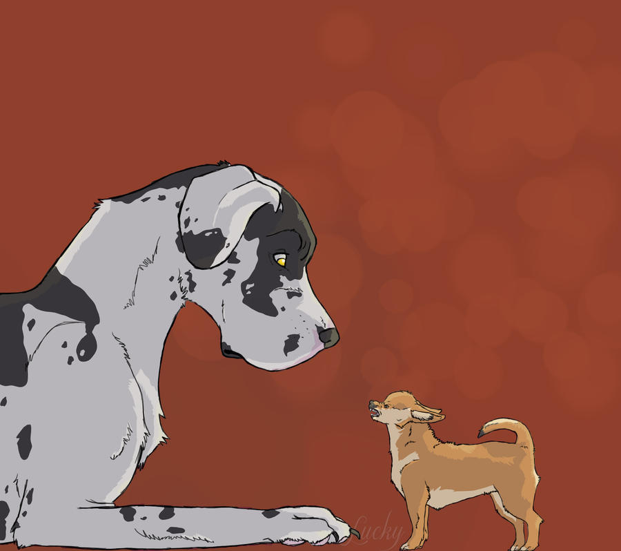 Image Result For Dog Cartoons About