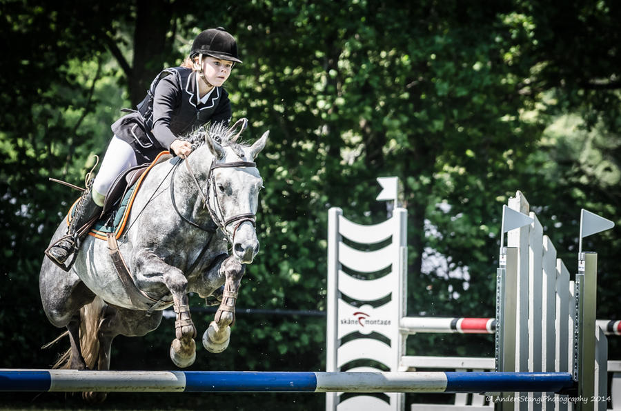 Show Jumping -Go Left by AndersStangl