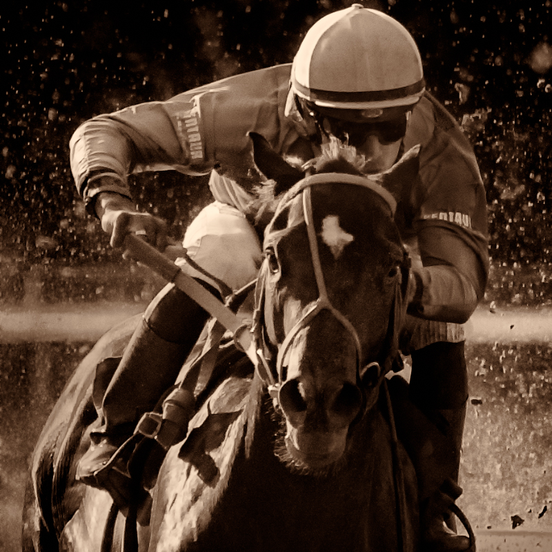 Horseracing -Turn by AndersStangl