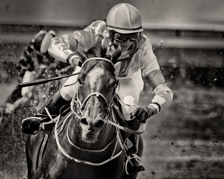 Horseracing -Breathe by AndersStangl