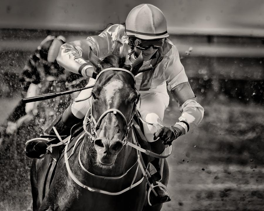 Horseracing -Breathe by AndersStangl
