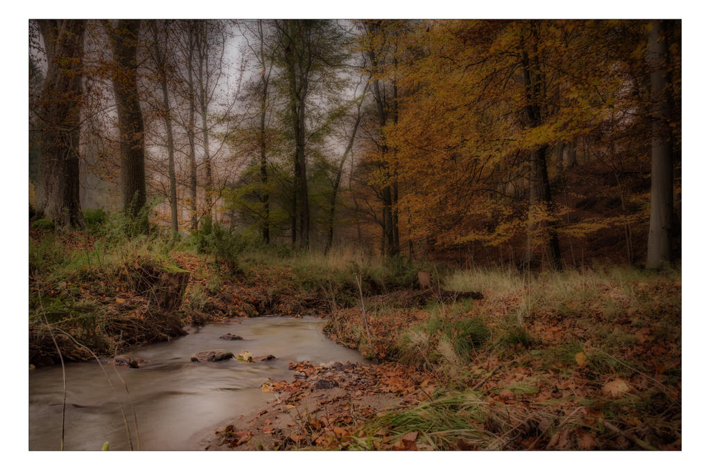 A Creek by AndersStangl