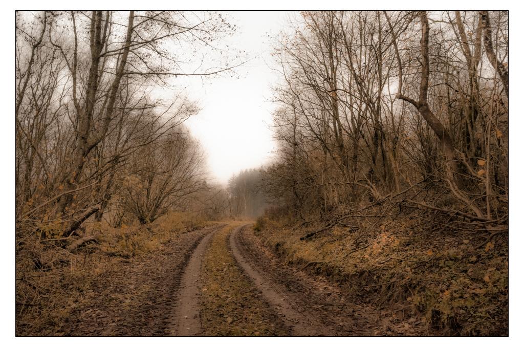 November by AndersStangl