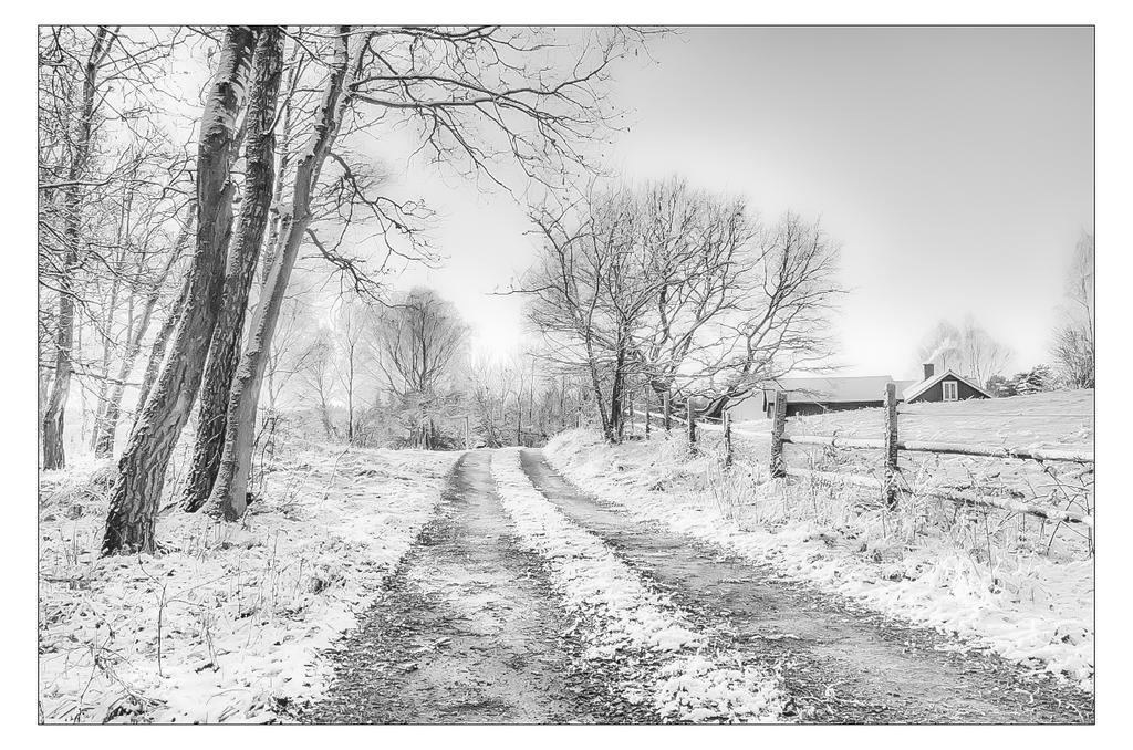 Everyday Walk by AndersStangl
