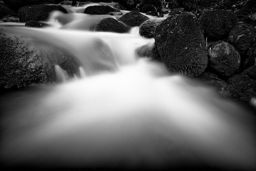 Flow Of Life by AndersStangl