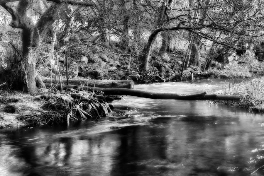 Rovarekulan Nature Preserve by AndersStangl