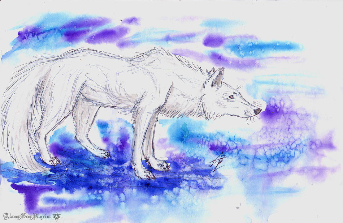 wolf by AlaveyGreyPilgrim
