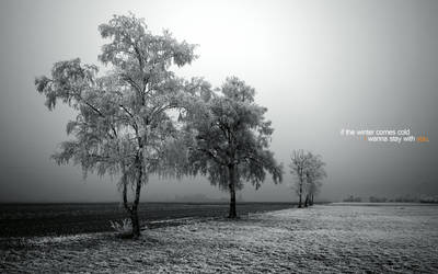 togheter in the cold by art-e-fact