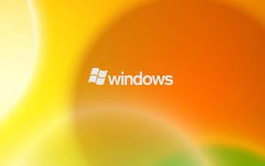 windows 2 by art-e-fact