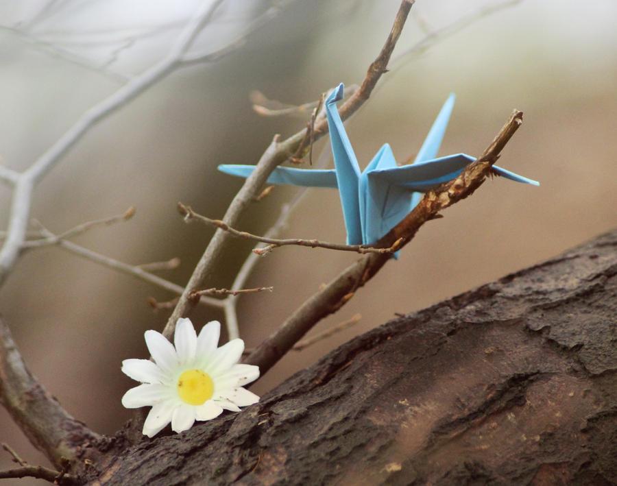 Peter Doherty - New Love Grows on Trees Lyrics | Musixmatch