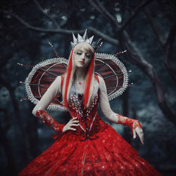 Red queen by Vavalika