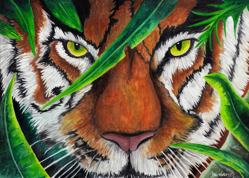 Eye of the Tiger by incomitatus3