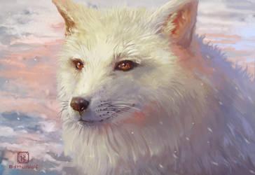 Arctic fox by MalthusWolf