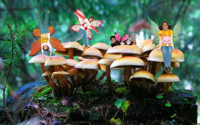 Mushroom fairys