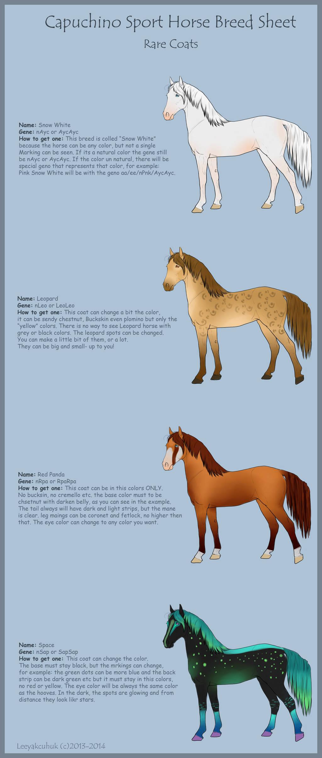 Cpuchino Sport Horse Breed Sheet- Rare Coats by LeeyaKuchuk