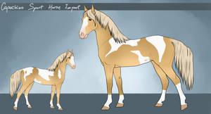 Capuchino sport Horse - Import #17 by LeeyaKuchuk