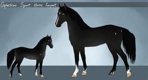 Capuchino Sport Horse - Import #34 by LeeyaKuchuk