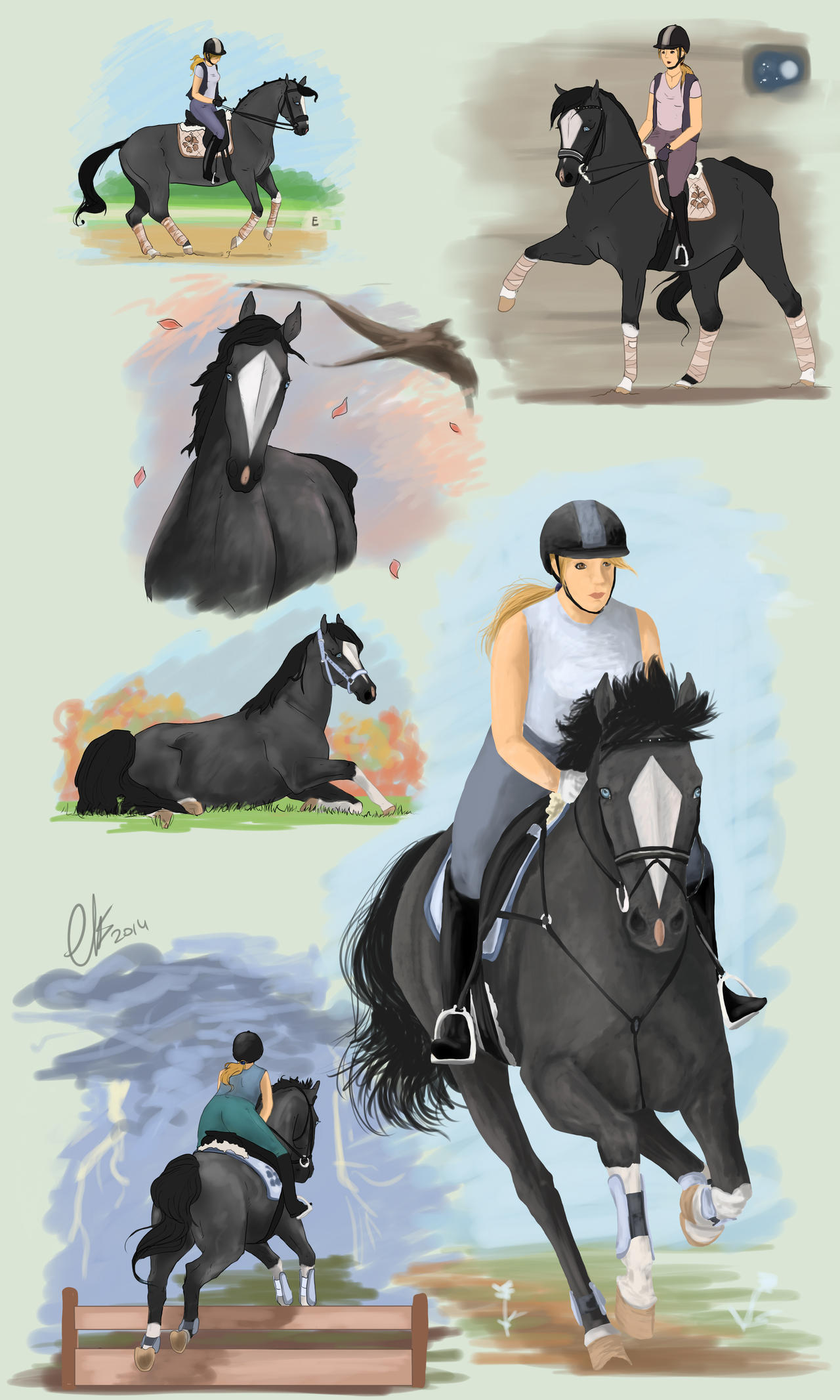 BMS Gawaii - Dressage and SJ Training by LeeyaKuchuk