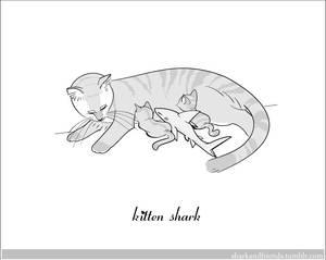 Kitten Shark